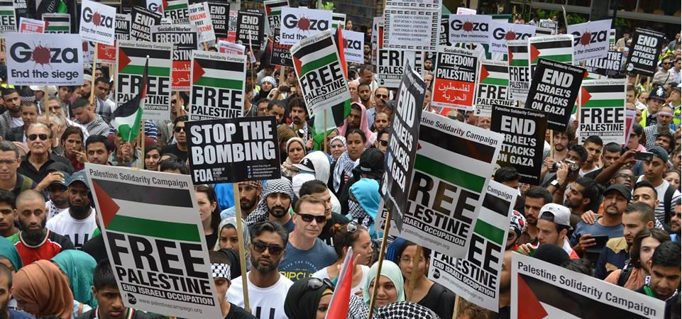 gaza demo feature
