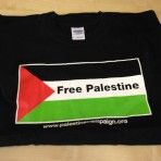 'Free Palestine' Flag T-shirt (black)